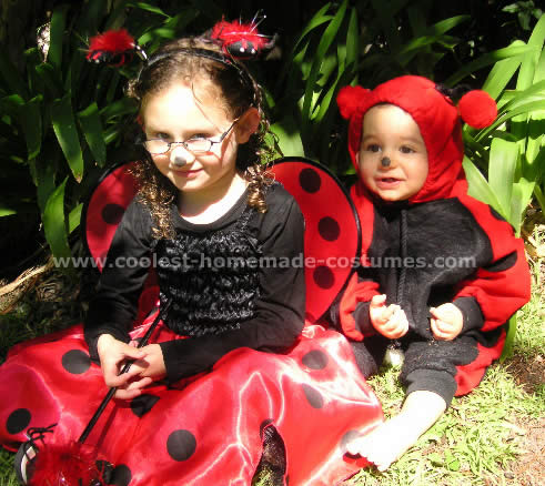 Coolest homemade ladybug costumes lady bug costume solutioingenieria Image collections