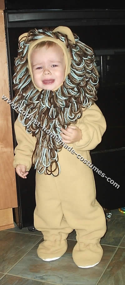 Coolest homemade lion costumes lion costume solutioingenieria Image collections