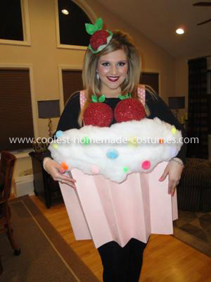 Make Your Own Cupcake Costume