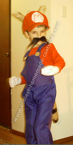 Mario and Luigi Costume