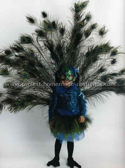600 awesome animal costume ideas for diy costumers cool homemade peacock costume solutioingenieria Images