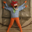 Other Muppets Costumes
