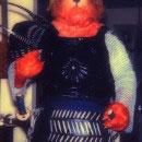 Samurai Cat Costumes