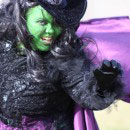 Wicked Witch of Oz Costumes